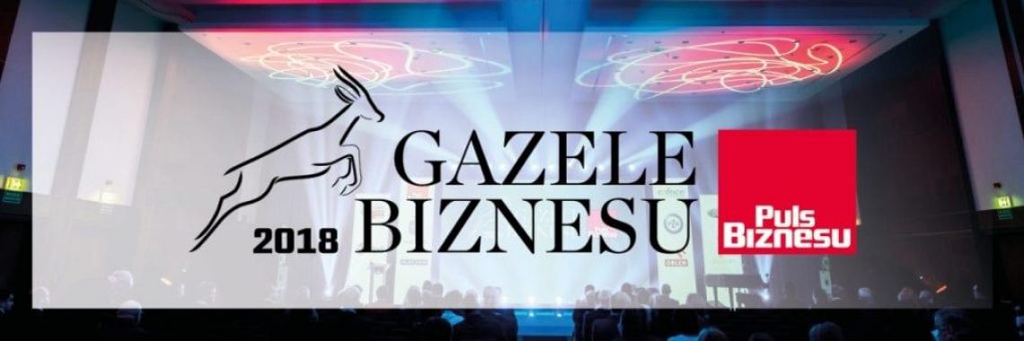 Szablon tlc gazele biznesu eng 2018 2 1140x3802